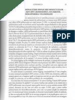 Genomica-telomeraza