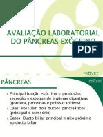 90-Diagnostico_da_Insuficiencia_Pancreatica_Exocrina