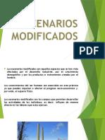 ESCENARIOS MODIFICADOS