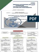 Mapa Conceptual Miembro Inferior.pdf