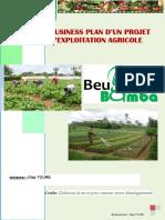 business_plan-1564920344.pdf