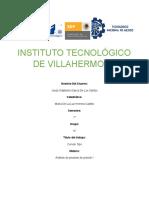 gordita analisis.docx