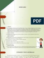 SEMINAIRE CHAMBRE DE COMMERCE (salaire).pptx