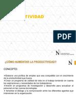 4.1 Productividad (1)(1).pdf