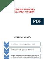 Opinion y Dictamen NIA (1)