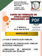 7-MODULO-09-05-2018---Constelacao-Familiar.pdf