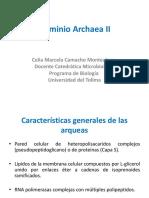 Dominio Archaea II