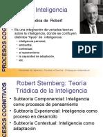 Teoría Triadica de la Inteligencia sternberg 2008