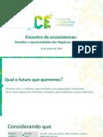 Apresentação ICE - Debora Souza Batista