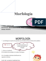 morfología colegio