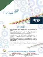 CONCEPTOS BÁSICOS DE SEGURIDAD Y SALUD EN EL TRABAJO - Scopex Group SAC