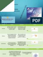 Comparativo-Sobre-La-Estructura-y-Funcion-de-Las-Celulas-Del-Sistema-Nervioso diana lozada.pptx