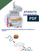 Fisiologia Digestiva.ppt