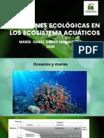 RELACIONES ECOLOGICAS EN LOS ECOSISTEMAS ACUATICOS (4)