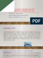2. SESION - 2.6. PRINCIPIOS GENERALES DEL DERECHO INTERNACIONAL.pptx