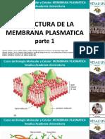 Estructura de la membrana_1