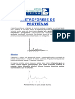 Eletroforese de Proteinas.pdf