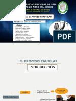 Diapositivas Proceso Cautelar.pptx