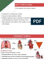 Aula 1- Anato Sist Cardiovascular.pdf.pdf