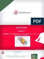 2da.classe. CELULA (1).pdf