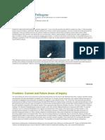 Bacteria as Plant Pathogens