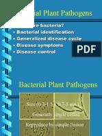 Bacterial Plant pathogens