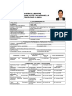 Curriculum Joffre Villalva (1)