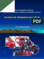 INTRODUÇÃO A SOCORROS BÁSIOS