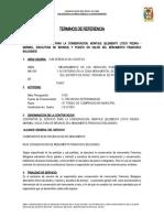 TDR francisco bolognesi - copia