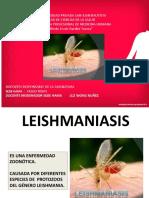 Leishmaniasis 2020