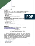 Guia de practica_Liderazgo y Creatividad Profesional 02