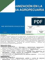 UNIDAD 4 ORGANIZACION 2015