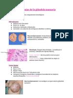 Patología de mama
