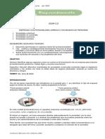 Guía #3 E_805
