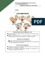 UNIDAD TEMÁTICA 2. LOS SENTIDOS