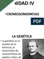 BASES BIOLOGICAS UNIDAD IV