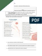 guia_actividades (1)
