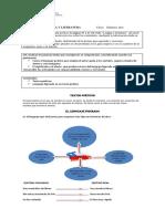 guia 4 completa.pdf