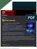 20.02.09 - Mycelial Network Memory Alpha Fandom