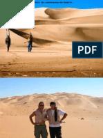 Amici nel Deserto