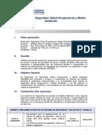 Diplomado SSOMA JUNIO.pdf