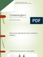 Cinesiologia-II_Musculos do membro inferior.pdf