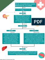 mapa mental de glucosa.pdf