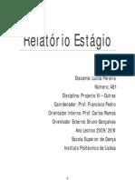 Relatório Projecto VI - Outras Lucila Pereira