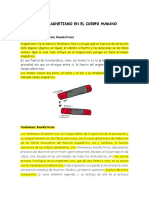 BIOFISICA oficial.pdf