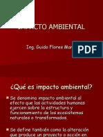IMPACTO-AMBIENTAL.ppt