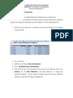 (11) Area de impresión