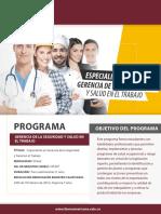 gerencia-de-la-seguridad-y-salud-en-el-trabajo-2-.pdf