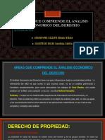 Analisis-economico-Areas Que Comprende El Aed