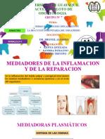 GRUPO 7 - MECANISMO DEL PROCESO INFLAMATIVO (1).pptx